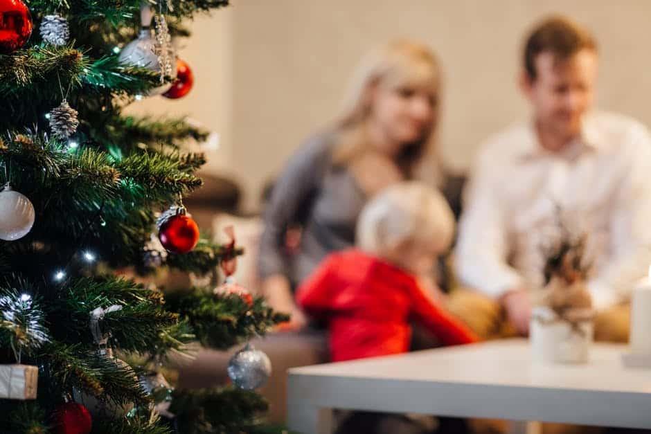Vacanze di Natale e Bambini Istruzioni per l'Uso